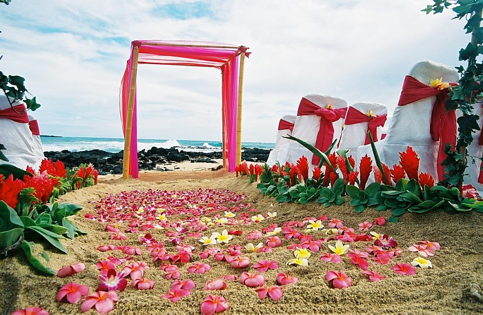 pink wedding beach decor