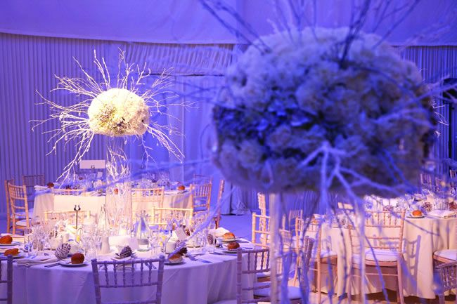 perfect blue winter wedding