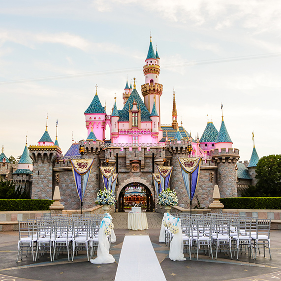 gorgeous disney wedding theme
