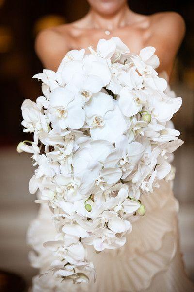 white orchids bouquets