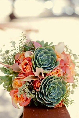 colorful succulent bouquet